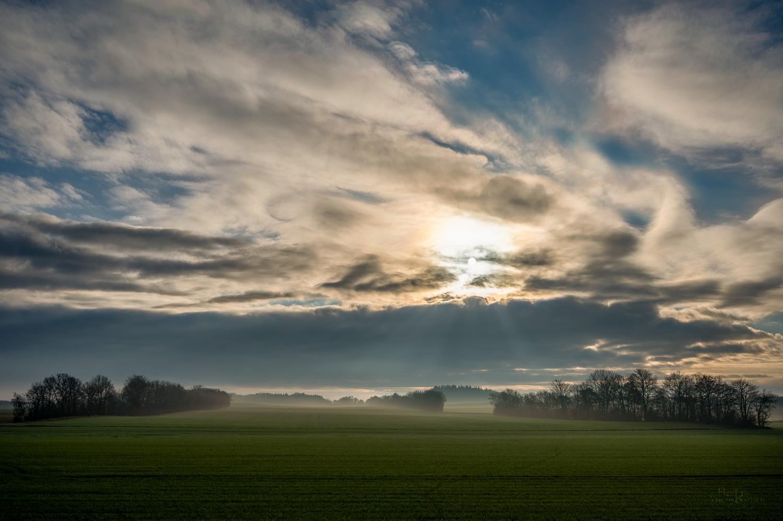 Natur Jylland 2021